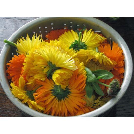 Körömvirág csészés-vágott
